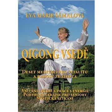 Qigong vsedě: Deset meditací pro vitalitu a radost ze života (978-80-7511-606-2)