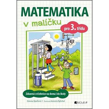 Matematika v malíčku pro 3. třídu: Zábavné cvičení na doma i do školy (978-80-253-3248-1)
