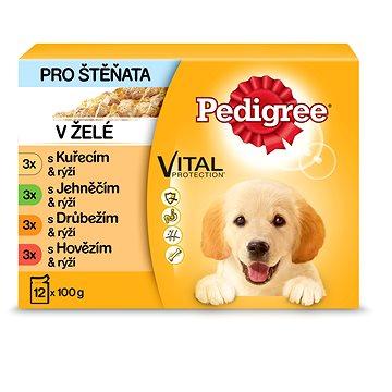 Pedigree Vital Protection kapsička pro štěňata masový výběr s rýží v želé 12 × 100 g (5900951140082)