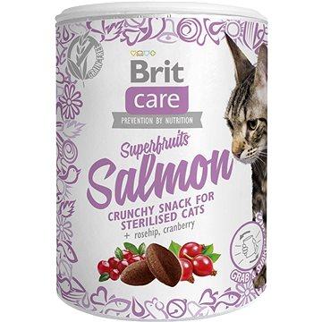 Brit Care Cat Snack Superfruits Salmon 100 g (8595602521449)