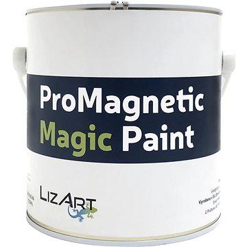 Poukaz na Magnetická barva z Holandska 2,5 l (RAD02RQ)