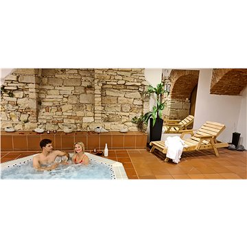 Relaxace s gurmánskou večeří pro dva v Hejtmanském dvoře ve Slaném (RADOST00002AS)